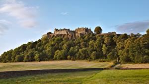 Обои Шотландия Лес Замки Пейзаж Трава Sterling castle Природа