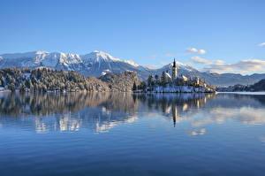 Картинки Словения Озеро Гора Замок Зима Альп Снега Lake Bled, Bled castle Природа