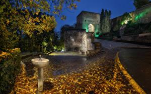 Фотографии Испания Осенние Дворец Ночь Лучи света Листья Alhambra Granada Города