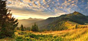 Фотографии Рассветы и закаты Горы Пейзаж Деревья Трава