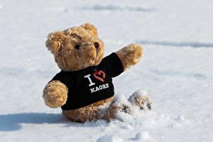 Картинки Плюшевый мишка Снег Сидящие Сердечко Английский