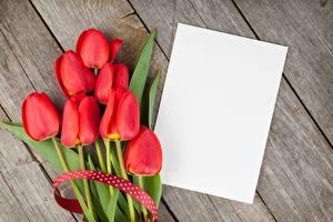 Фотографии Тюльпаны Красный Доски Лист бумаги Шаблон поздравительной открытки Цветы