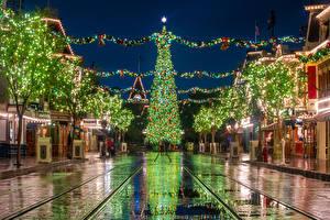 Фотографии США Диснейленд Рождество Парки Дома Калифорнии Анахайм Новогодняя ёлка Ночные Улица Электрическая гирлянда город