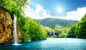 Фотография Водопады Леса Реки Лето Пейзаж Скале Природа
