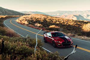Обои Форд Дороги Красный Металлик 2019 Mustang Shelby GT500