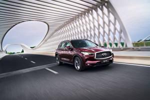 Обои Инфинити Бордовый Едущий 2018-19 QX50 2.0t Авто