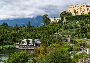 Фотографии Италия Сады Замки Пруд Деревья Кусты Trauttmansdorff Castle Gardens Merano Природа