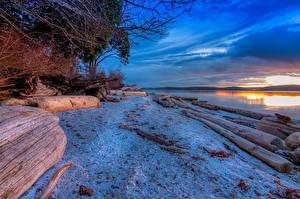 Картинка Япония Рассвет и закат Река Берег Бревна Снегу Numata