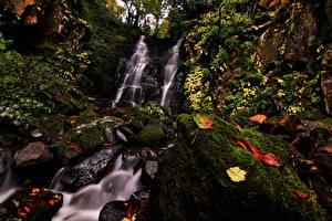 Картинки Япония Водопады Камни Скала Мох Листва Fudotaki Falls Katsuyama