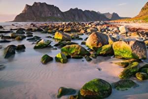 Фото Норвегия Лофотенские острова Горы Побережье Камни Мох Природа