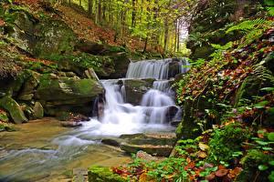 Фотография Польша Камень Осень Водопады Мох Листья Bieszczady Природа