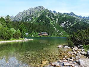 Фотографии Словакия Горы Озеро Лес Камни Popradske pleso High Tatras Природа
