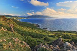 Фотографии Тайвань Побережье Пейзаж Мох Природа