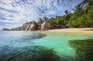 Фотографии Таиланд Остров Тропики Камни Побережье Пальмы Phuket Природа