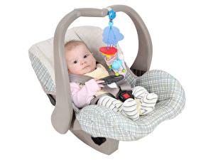 Картинка Игрушки Белом фоне Младенца Взгляд Кресло Ребёнок