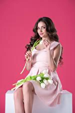 Фотография Тюльпан Цветной фон Брюнеток Улыбка Сидя Платье девушка