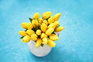 Картинка Тюльпаны Желтый