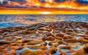 Фото США Рассветы и закаты Море Берег Калифорния Природа
