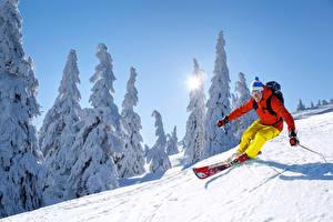 Картинки Зимние Лыжный спорт Мужчина Снега Едет