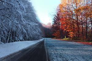 Картинка Осень Дороги Зимние Деревья Снег Природа