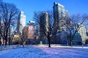 Картинки Канада Здания Зимние Торонто Снег Дерево Города