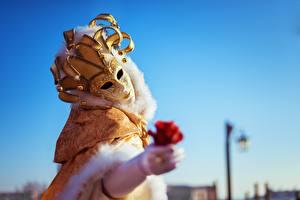 Фотография Карнавал и маскарад Маски Розы