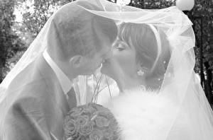 Картинки Любовники Мужчина Свадьба Поцелуй Двое Женихом Невеста девушка