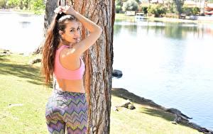 Картинки Фитнес Ствол дерева Шатенка Спина Смотрит Красивые Девушки