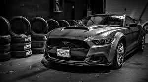 Картинки Ford Черно белое Mustang Widebody Автомобили