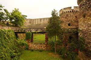 Фото Крепость Мосты Сербия Стена Деревья Belgrade Fortress Города
