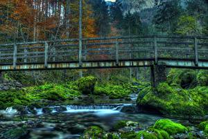 Фотографии Германия Реки Мосты Леса Камень Мох HDR Schwarzbach river Природа