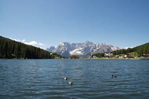 Картинка Италия Озеро Горы Пейзаж Альпы Снег Lake Misurina Природа