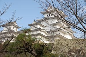 Картинки Япония Замки Ветки Himeji Castle, Hyogo prefecture Города
