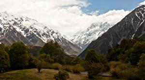 Фотографии Новая Зеландия Горы Деревья Снег Mount Cook National Park Природа