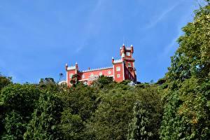 Фотографии Португалия Замки Парки Sintra, Park Sintra-Cascais