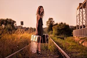 Фотографии Железные дороги Чемоданом девушка