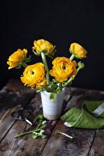 Картинки Лютик Доски Ваза Желтый