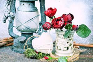 Картинки Роза Керосиновая лампа Вазы Снегу Сердечко Цветы