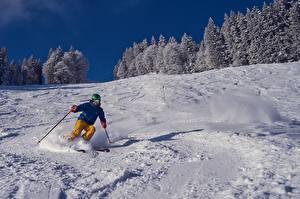 Фотография Лыжный спорт Зимние Мужчины Снег