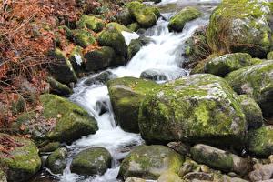 Фотографии Камень Ручей Мох Природа