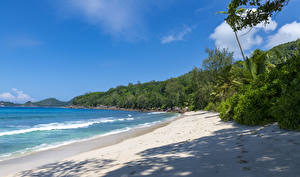 Фотография Тропический Побережье Волны Кусты Песок Seychelles Anse Takamaka Природа