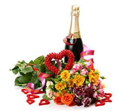 Фотографии День всех влюблённых Букеты Розы Игристое вино Белый фон Бутылка Сердца Цветы