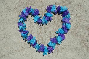 Картинки День всех влюблённых Сердечко Дизайн Лепестки