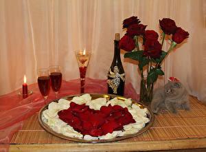 Картинки День святого Валентина Роза Свечи Вино Кот Лепестки Бутылка Бокал Цветы Еда