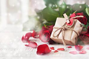 Фотография День всех влюблённых Розы Подарков Лепестки Прищепки Сердце Цветы