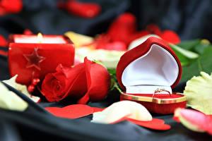Обои День всех влюблённых Розы Красный Сердечко Коробка Кольцо Цветы