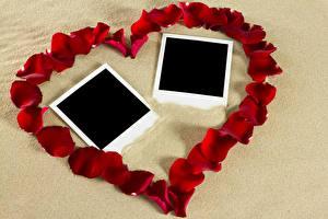 Картинка День всех влюблённых Шаблон поздравительной открытки Сердечко Лепестки Красный Дизайн Цветы