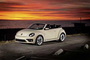 Картинка Фольксваген Кабриолет 2019 Beetle SEL Final Edition  Convertible