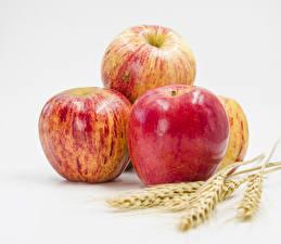 Обои Яблоки Вблизи Белом фоне Колосья Продукты питания