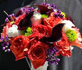 Обои Букеты Розы Белокрыльник Цветы